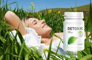 pendapat tentang Detoxic